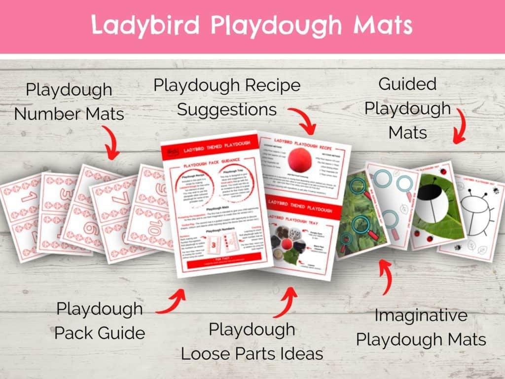 Copy of Ladybird Playdough Mats