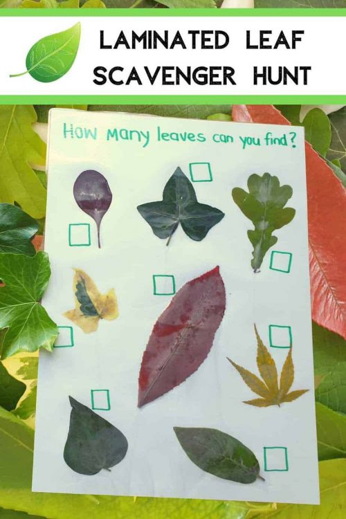 leaf activities preschool learning fun